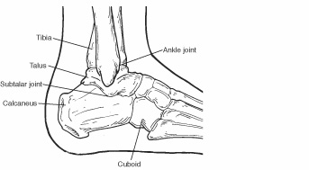 capital foot and ankle care